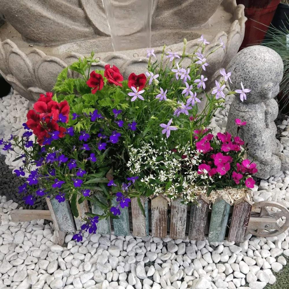 Jardin au jardin des plantes